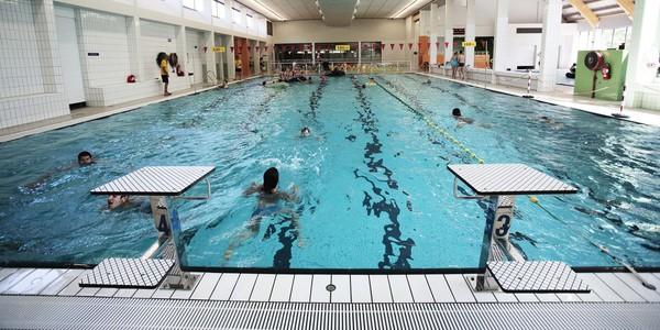 Overzichtsbeeld van zwembad Sorghvliedt