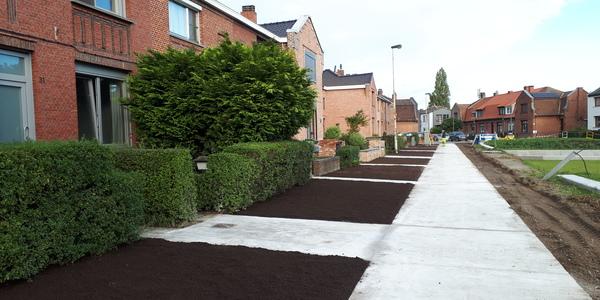 De nieuwe betonpaden aan het Florent Cootmansplein