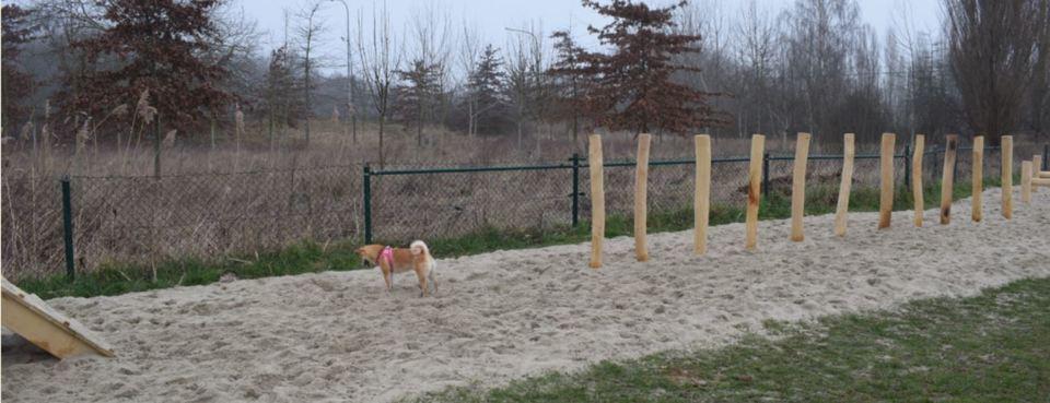 Hondenloopzone Laarsebaan - speeltuin