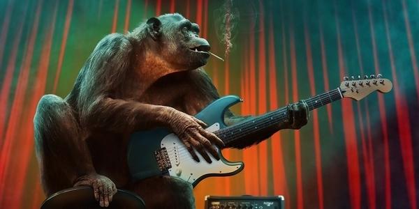 Rokende aap met gitaar