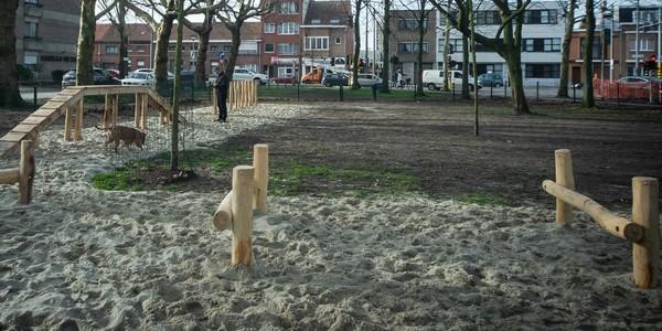 Hondenloopzone met evenwichtsbalk en horden
