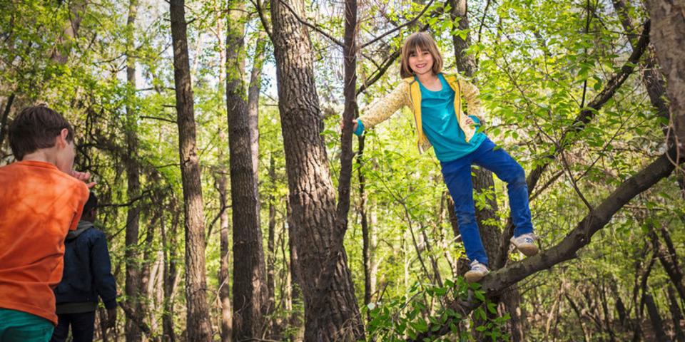 kinderen spelen in het bos