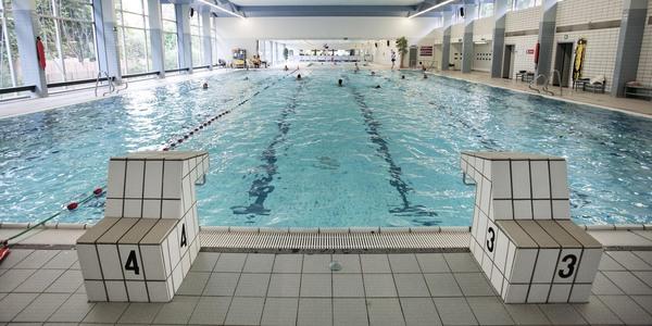 Overzichtsbeeld van zwembad Ieperman