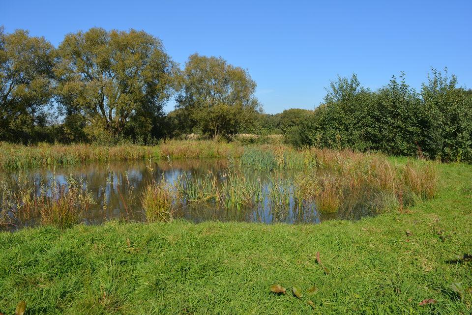 Wetlands, één van de veertien landschappen van het Groenplan.