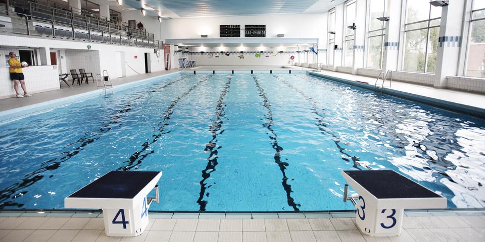 Overzichtsbeeld van zwembad Groenenhoek