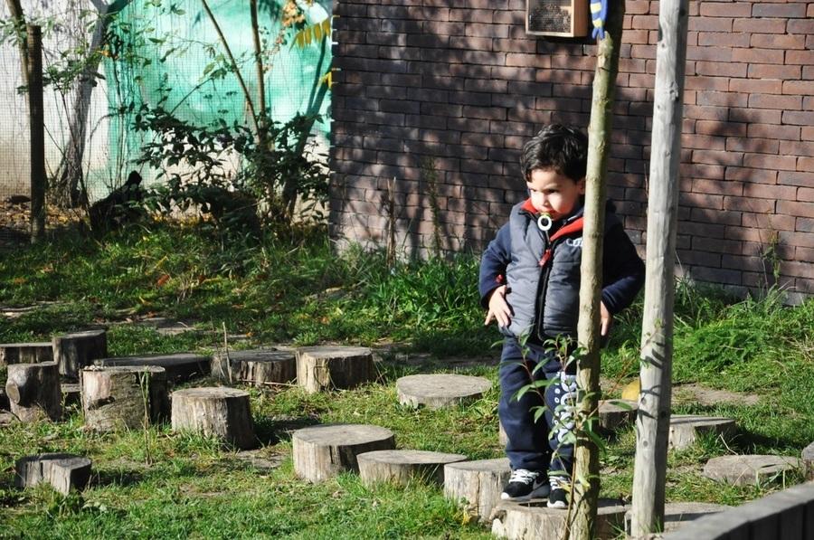 Jongen springt op stapstammetjes