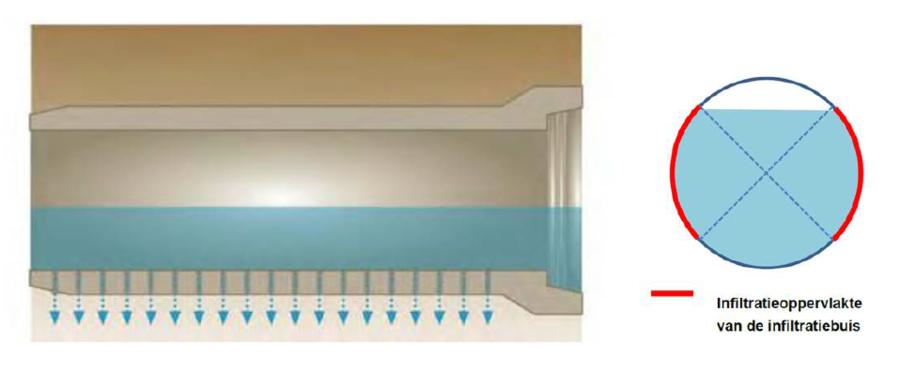 Schematische tekening die aanduidt hoeveel oppervlakte van een infiltratiebuis in rekening gebracht kan worden.