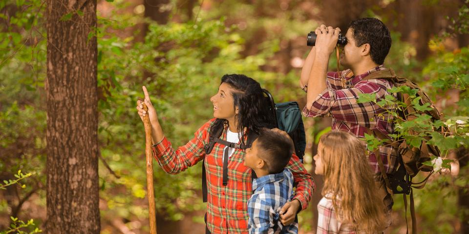 Moeder, vader en twee kinderen kijken naar vogels in een bos