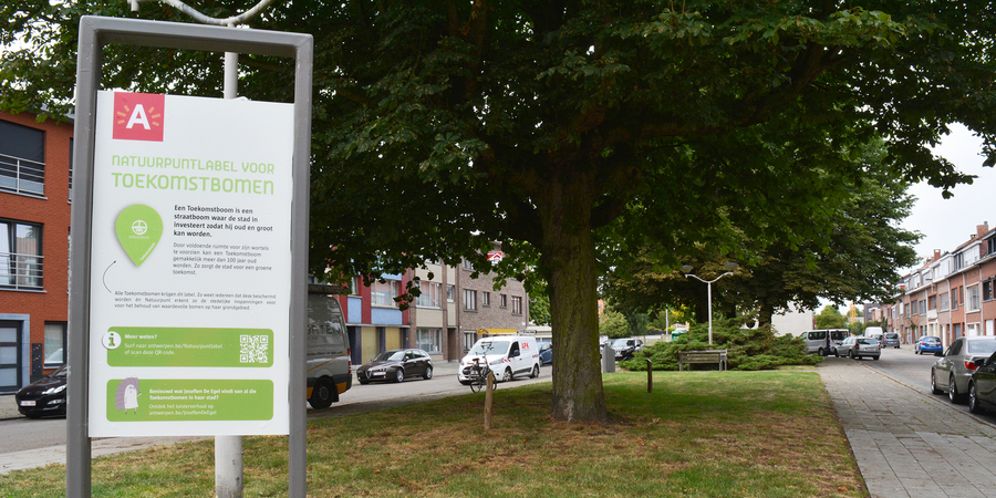 Een grasveld met enkele bomen. op de voorgrond een infobord met daarop 'NATUURPUNTLABEL VOOR TOEKOMSTBOMEN'.