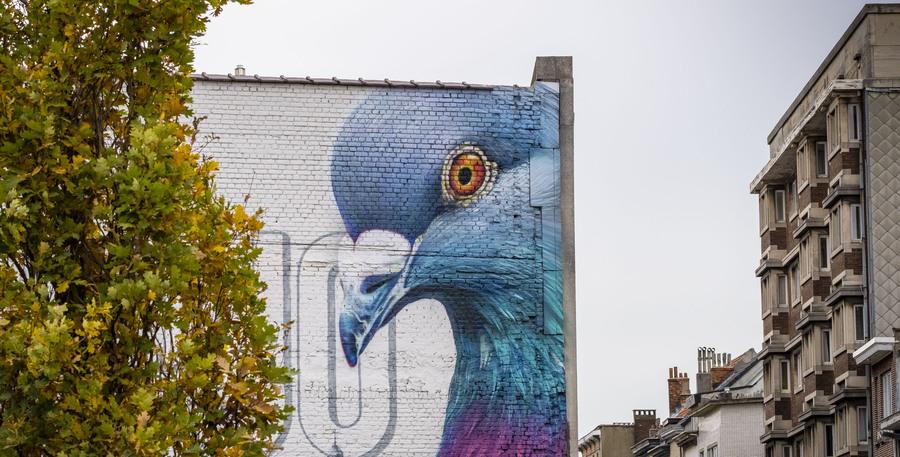 Graffitiwerk met de kop van een gigantische stadsduif