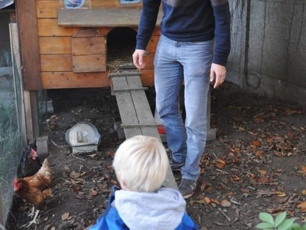 Kind en man staan in kippenhok