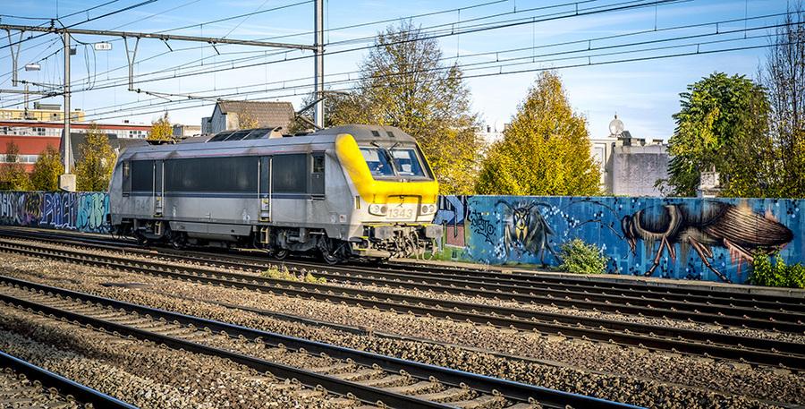 Trein rijdt het station binnen langs graffitiwerken