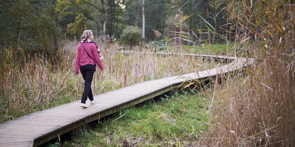 Vrouw loopt op Polderpad