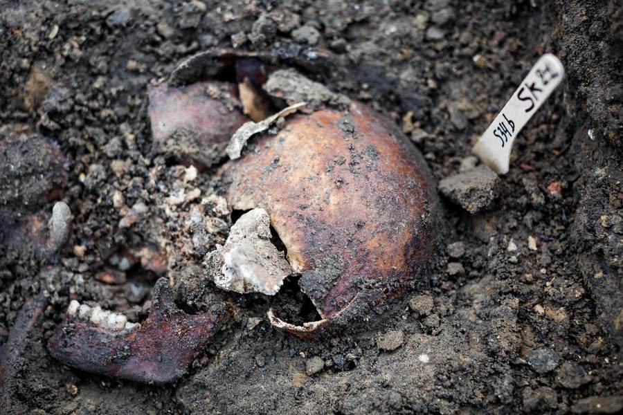 Schedel gevonden in één van de graven.