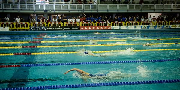 Sfeerbeeld tijdens een zwemwedstrijd in Olympisch zwemcentrum Wezenberg