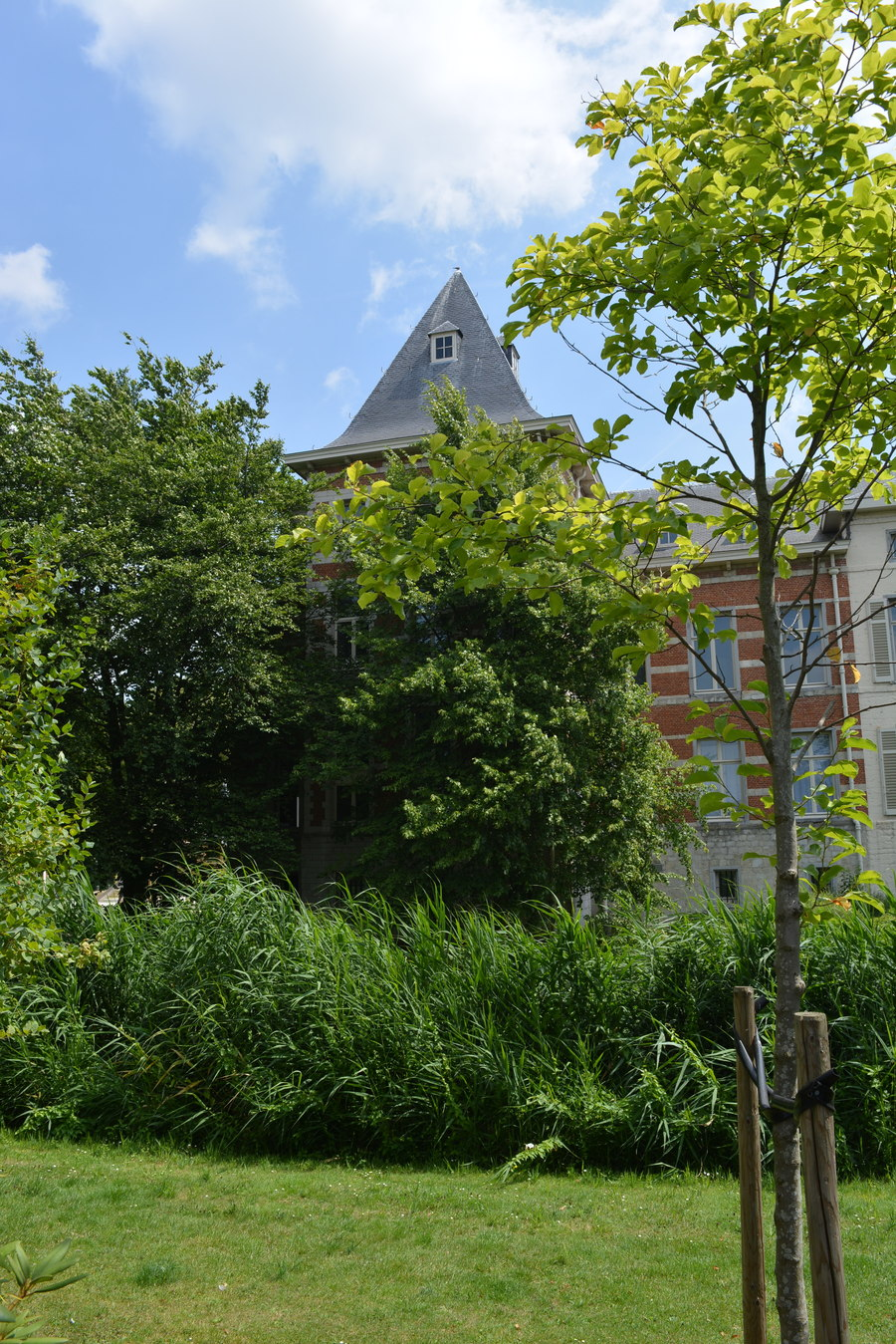 Het groen in Deurne wordt beschermd en kwalitatief versterkt met het Groenplan Deurne.