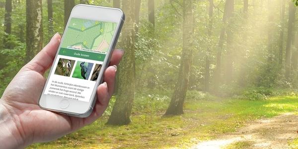 Smartphone in de hand van een persoon op stap in een bos