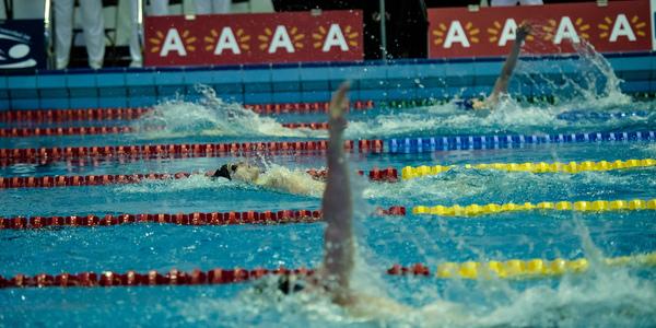 Zwemmers tijdens de Flanders Speedo Cup