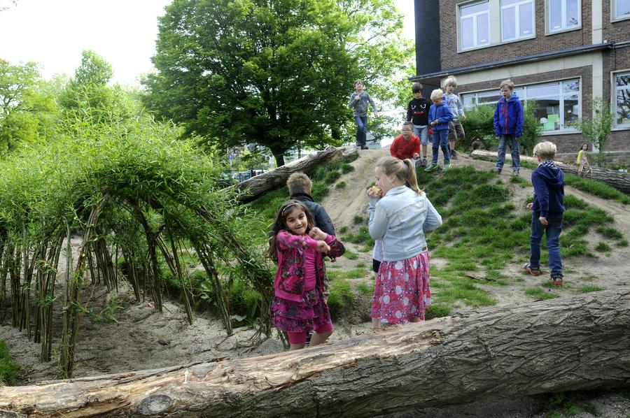 Grote liggende boomstammen als element om op te zitten en op de heuvel te klimmen
