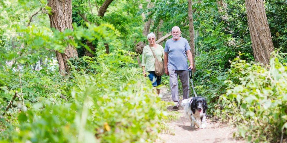 Twee wandelaars en een hond in de Tarzanboskes