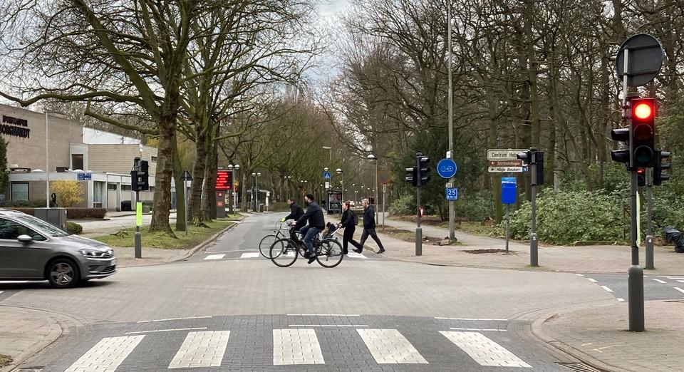 Zicht op het kruispunt van Krijgsbaan en Broydenborglaan met voetgangers, fietsers en auto