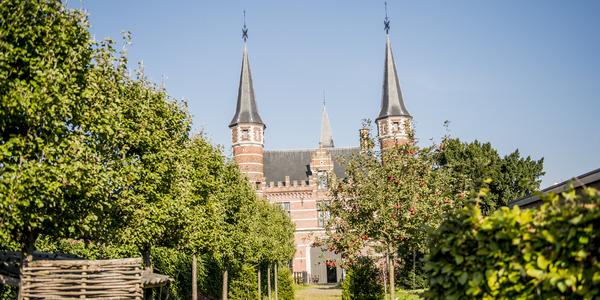 Het groen rondom de Drie Torekens in Deurne.