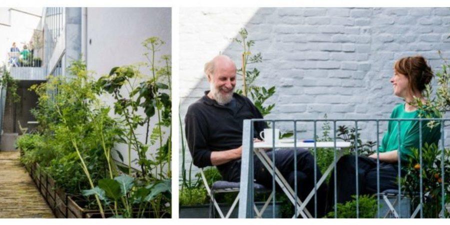 Koer, buitentrap en terras vergroend met plantn in potten en klimplanten langs de muur