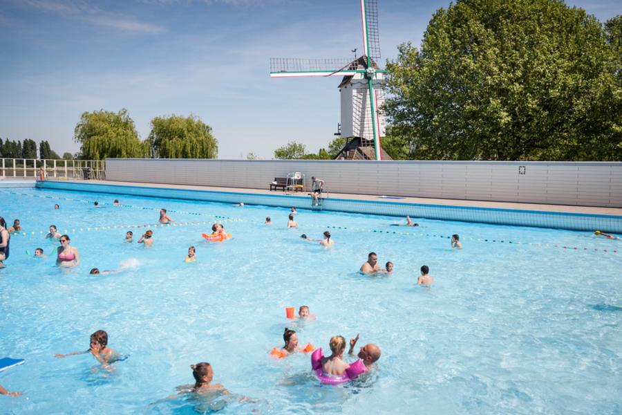 Mensen zwemmen in een openluchtzwembad - op de achtergrond staat een oude windmolen