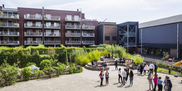 Een groene speelplaats van een middelbare school, met moestuin en groen amfitheater