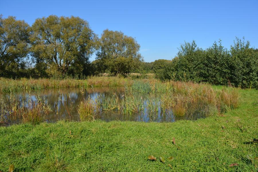 Struisbeekvallei, één van de veertien landschappen van het Groenplan.