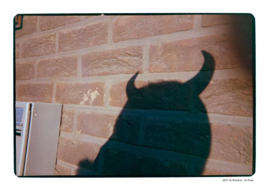 Schaduw van een persoon met duivelsoortjes tegen een muur