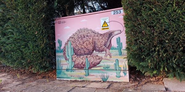 Een street art tekening van een gordeldier op een nutskast in de wijk Elsdonk