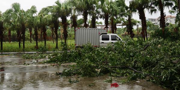 KLEIN-label te gast in bib Permeke met Typhoon Days