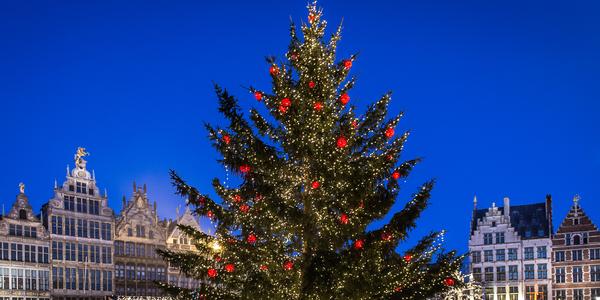 kerstboom op de Grote Markt