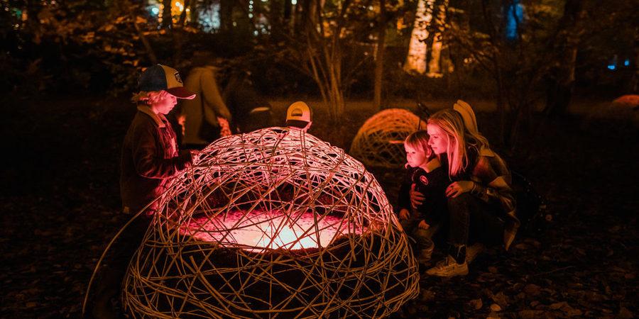 Twee kinderen en een vrouw kijken in het donker naar een verlichte kooi van takken in het Rivierenhof.