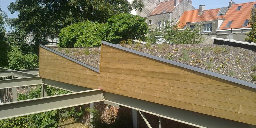 vernieuwd schuin dak met sedums beplant