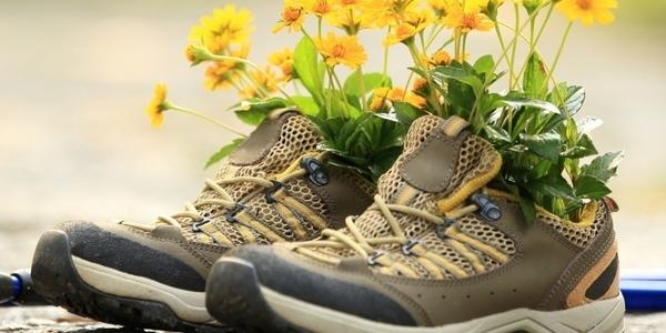 Zomerse wandelschoenen met een veldboeket.