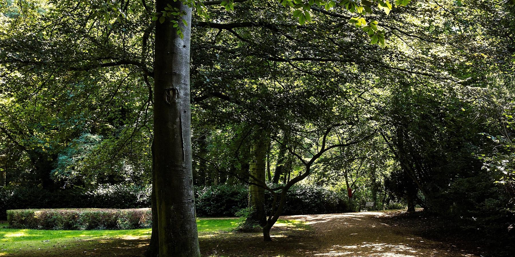 Boekenbergpark