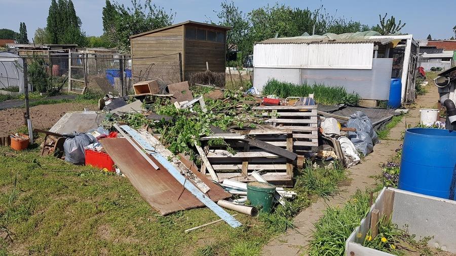 Een hoop afval uit het tuintje.