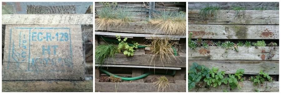 Draagt een pallet de code HT, dan is ze geschikt om eetbare planten in te telen.