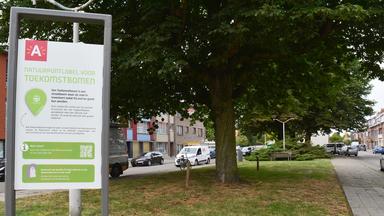 Antwerpen kleurt groener met toekomstbomen en gewild gras
