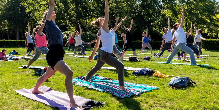 Verschillende mensen staan op een handdoek in een park en strekken hun armen in de lucht.