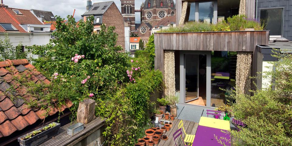 Terras met planten en groendak boven uitbouw