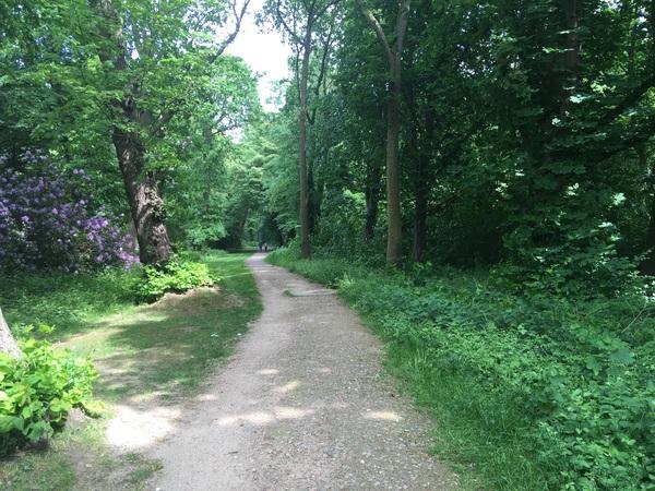 Trage weg tussen Oude Landen en Veltwijckpark, verbinding Donkweg - De Beukelaerlaan.