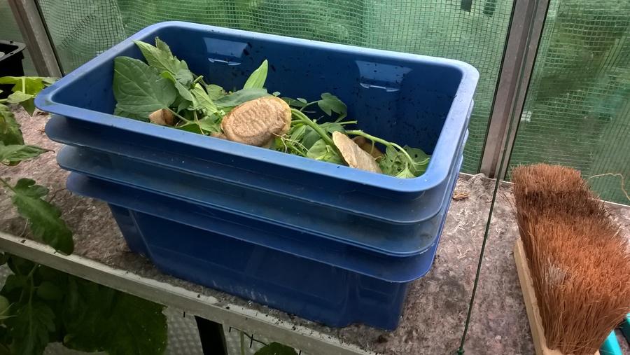 composteren wormenbak