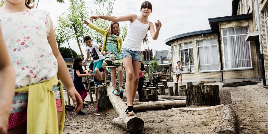 Kinderen balanceren over boomstammen