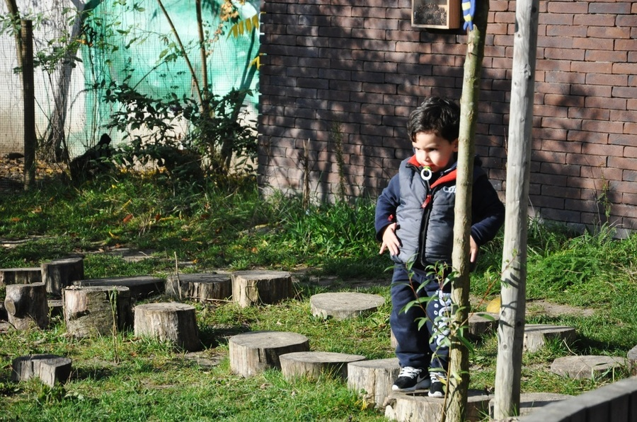 Jongen springt over lage boomschijven