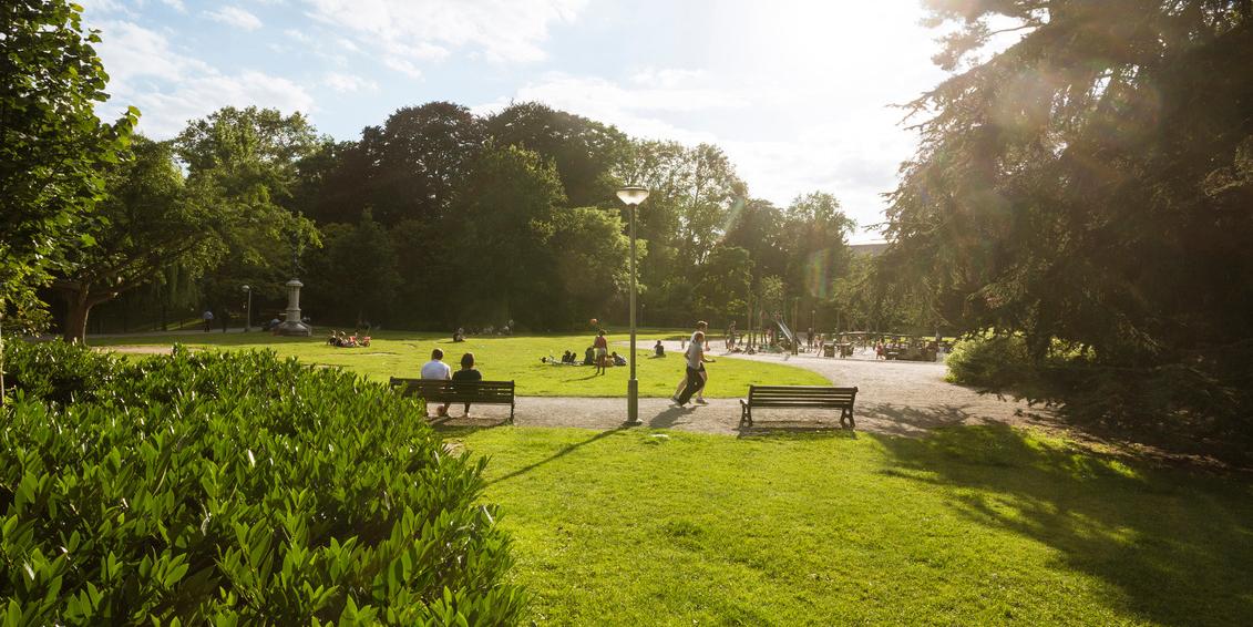 Beheerplan Stadspark Antwerpen Be