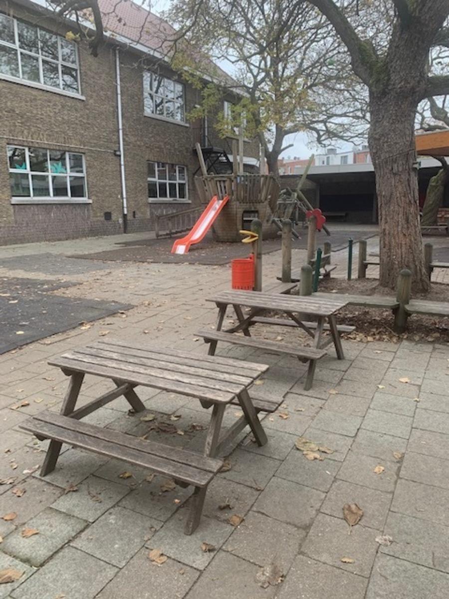 verharde speelplaats met picknicktafels, een glijbaan en een boom