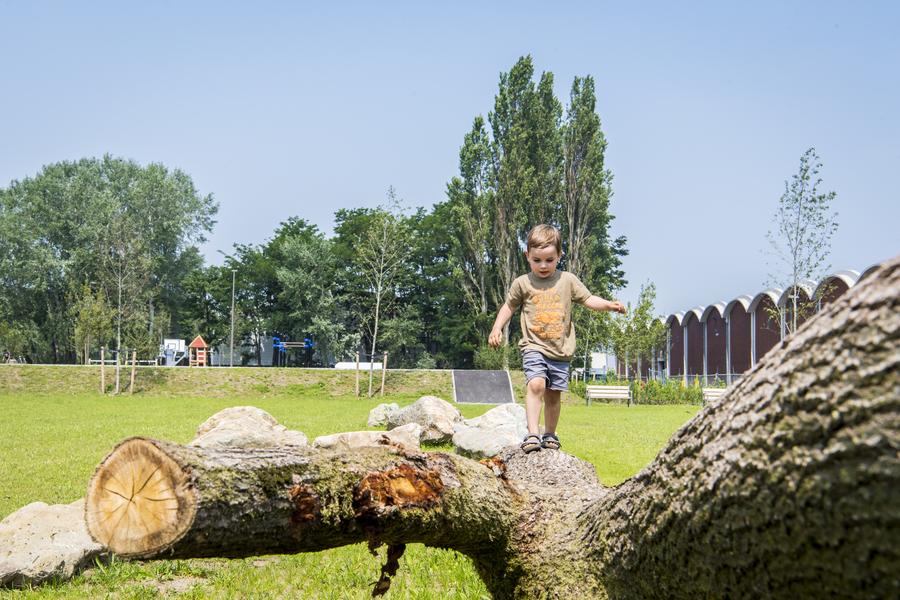 In het sport- en speelterrein in de wijk Regatta is er ook speelnatuur voor de kleinsten.